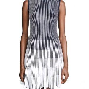 NWT Shoshanna ladley dress XS